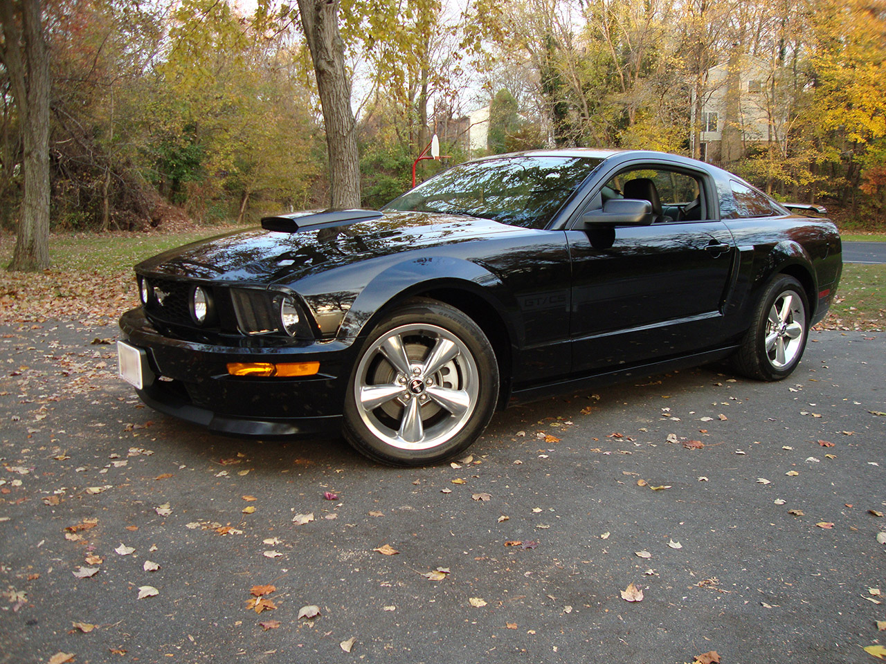 2008 ford mustang gt california special review. Black Bedroom Furniture Sets. Home Design Ideas