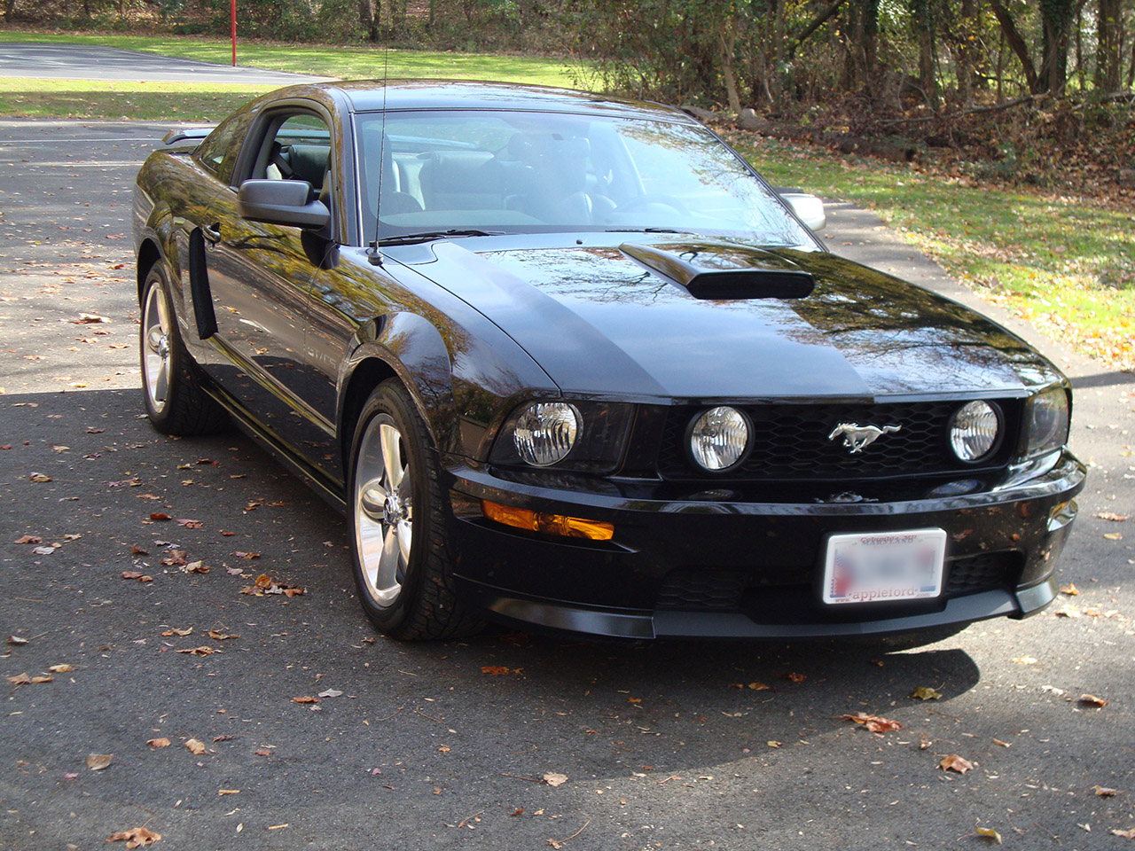 2008 ford mustang gt california special muscle cars news and pictures. Black Bedroom Furniture Sets. Home Design Ideas