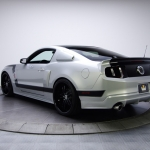 Tony Hawk Hawkized 2011 Ford Mustang GT 5.0