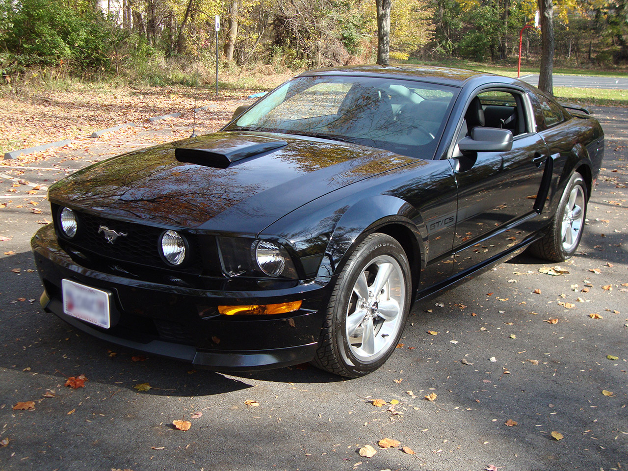2008 ford mustang gt california special muscle cars news. Black Bedroom Furniture Sets. Home Design Ideas